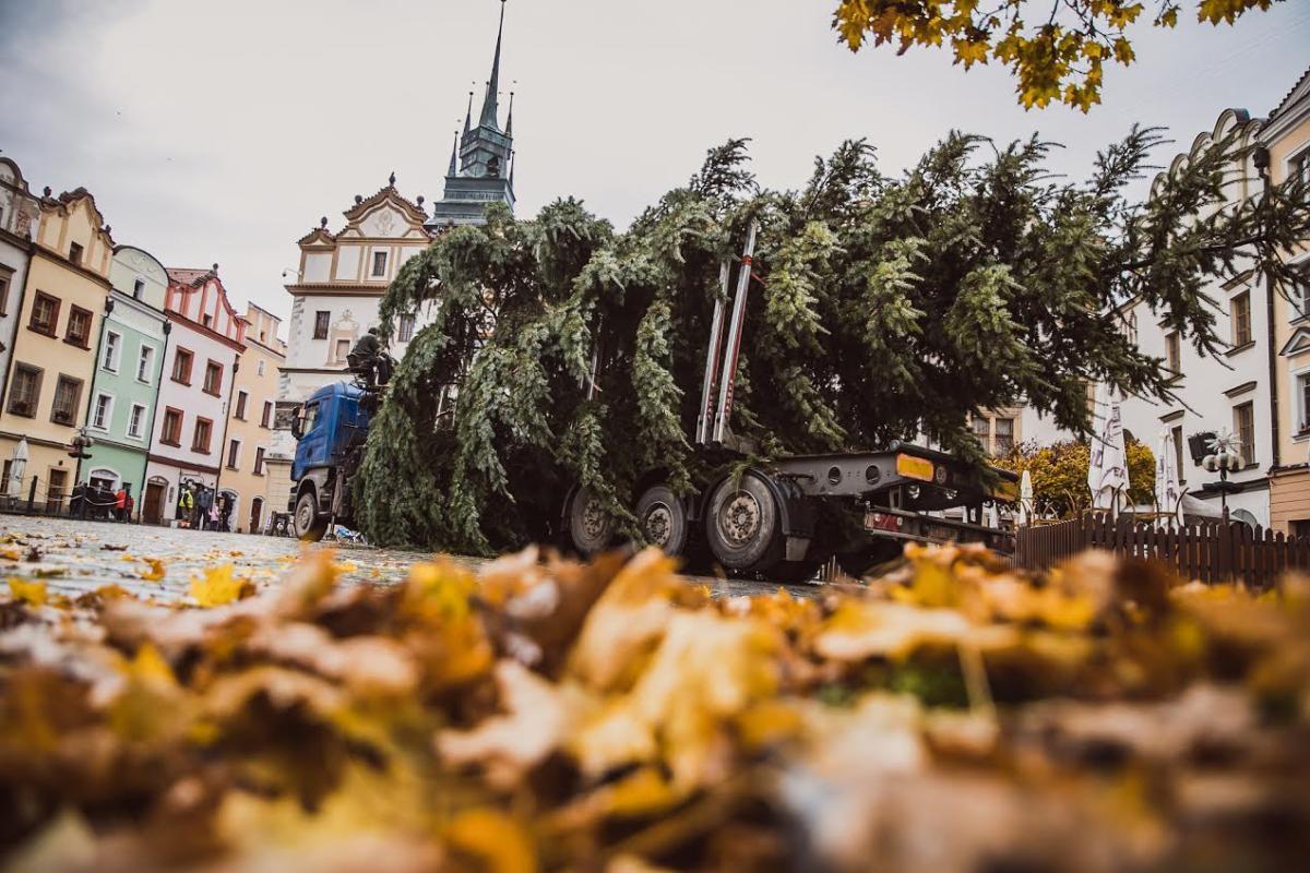Doprovodili jsme vánoční strom pro Pardubice
