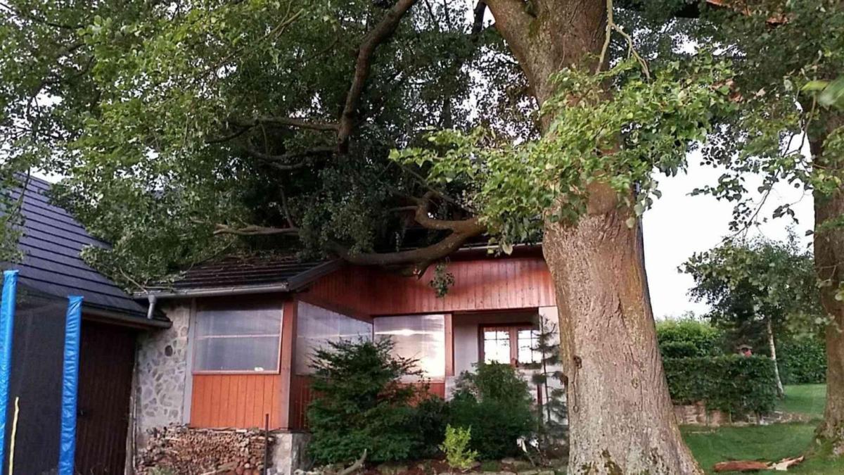 Varování meteorologů se naplnilo. Přes Pardubický kraj se v úterý ve večerních hodinách přehnala silná bouřka, která způsobila převážně pády stromů.