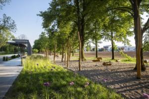 Tyršovy sady Parkem roku 2019