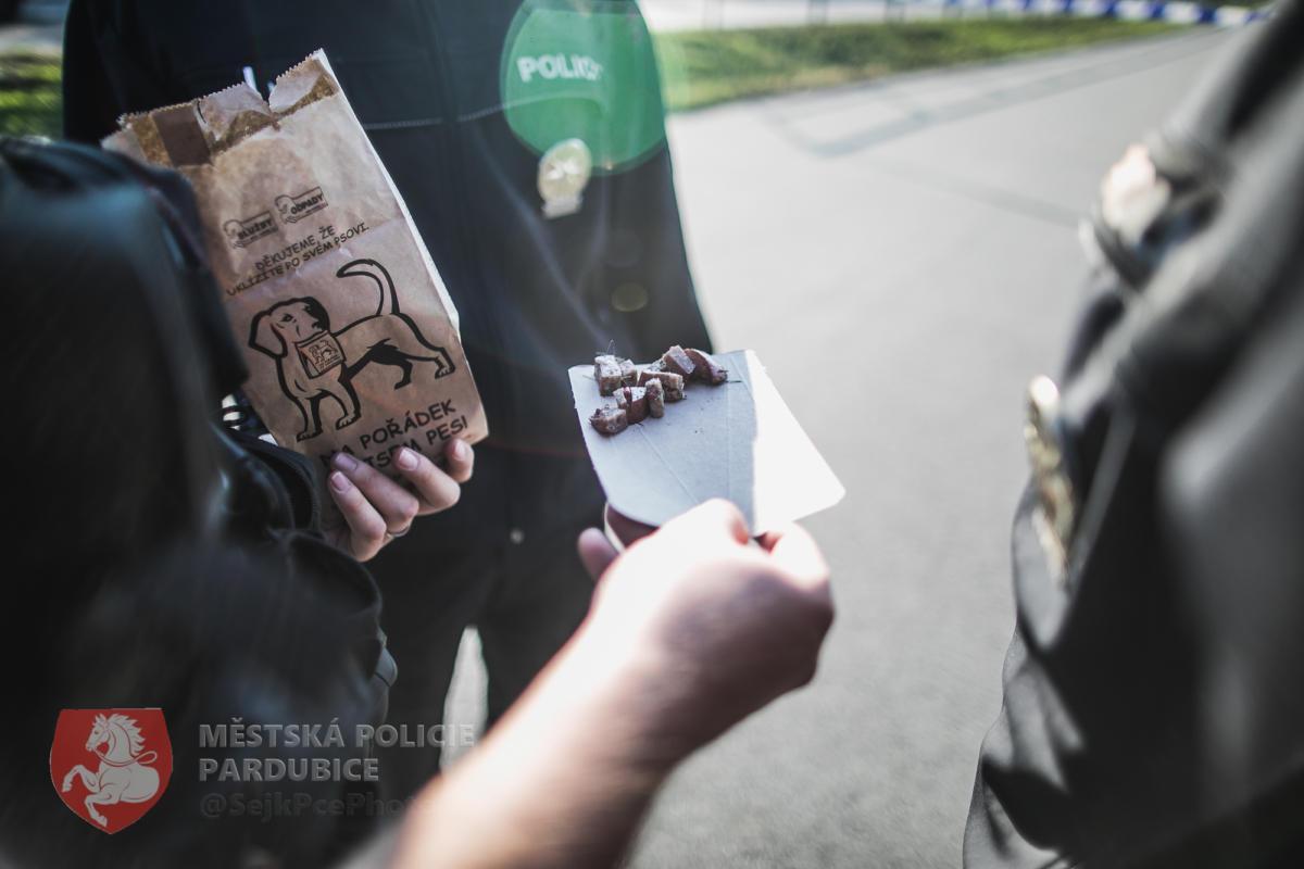 Policisté sesbírali větší množství otrávených návnad