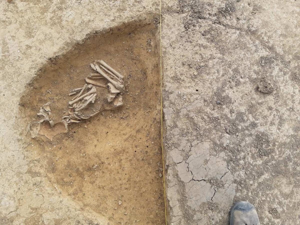 """Kostrový pohřeb """"skrčenec"""" v sídlištním objektu. Únětická kultura (2300 – 1700 př. n. l.)"""