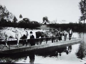 parforsni-hony-privoz-na-labi-1915-1