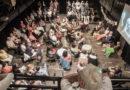 Východočeské divadlo láká na speciální vánoční díl pořadu Bez nápovědy…
