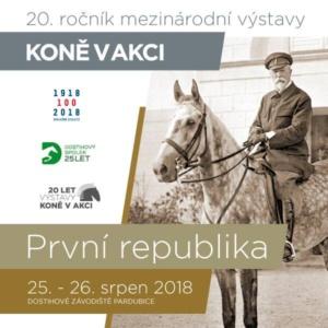 Koně v akci 2018 @ Dostihové závodiště Pardubice | Pardubický kraj | Česko