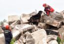 Záchranářští psi jsou i přes technický pokrok neocenitelným partnerem při vyhledávání osob…