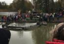 Výlov Bohdanečského rybníka 2018