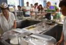 Neziskovky v kraji pomáhají téměř 700 žákům ze zajištěním školních obědů…