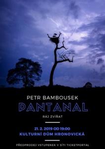 Pantanal - ráj zvířat | Petr Bambousek @ Kulturní dům Hronovická | Pardubický kraj | Česko