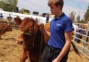 Jezdeckému sportu se v lanškrounské zemědělské škole daří již padesát let…