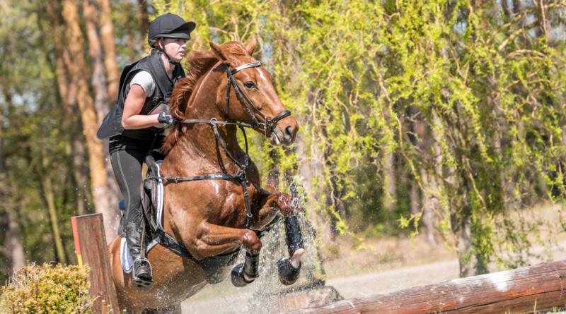 Nejnáročnější jezdecký sport znovu v Pardubicích…