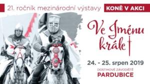 Koně v akci 2019 - Ve jménu krále @ Dostihové závodiště Pardubice | Pardubický kraj | Česko