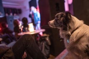 Slávek Král - Stopem se psem v Asii | Travel stand-up @ VČD mala scéna Pardubice | Pardubický kraj | Česko