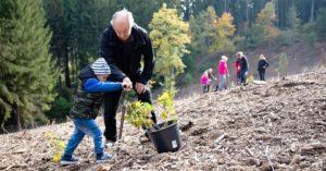 Den za obnovu lesa | Slatiňany @ Švýcárna (Slatiňany) | Slatiňany | Pardubický kraj | Česko