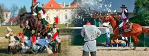 Podzimní městské slavnosti - Koně v proměnách staletí @ U Stadionu, 530 02 Pardubice, Česká Republika | Pardubický kraj | Česko