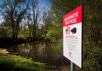 Nekrmte nutrie, vyzývá občany město na informačních cedulích…