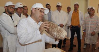 Odborníci vybrali na celonárodní pekařské soutěži v Pardubicích nejlepší Chléb roku 2021…
